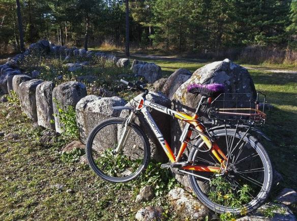 Min cykel vid skeppssättningen Tjelvars grav