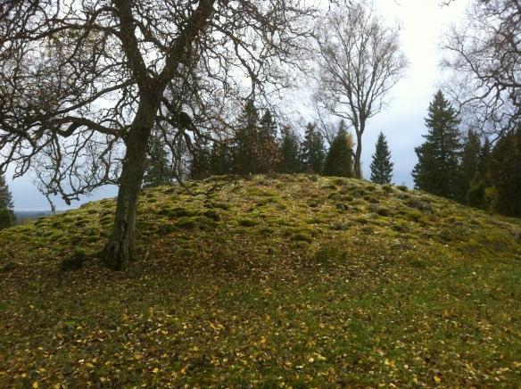 Fornlämning 63 i Forserums socken, även kallad Dejlarör. Dejel, eller dajel, är ett småländskt uttryck